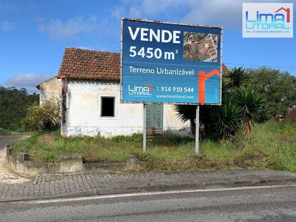 Cortes Leiria terrain picture 131575