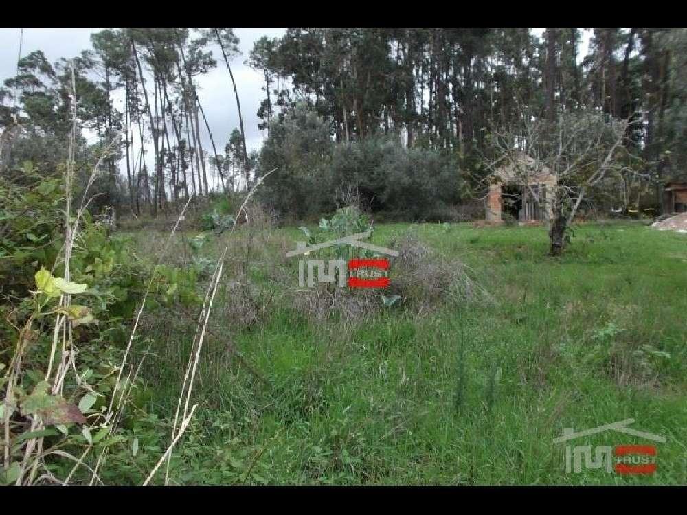 Urqueira Ourém terrain picture 136748