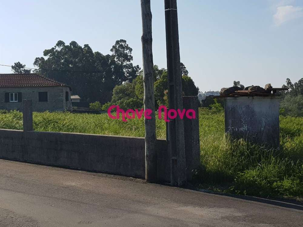 Lobão Santa Maria Da Feira terrain picture 133534