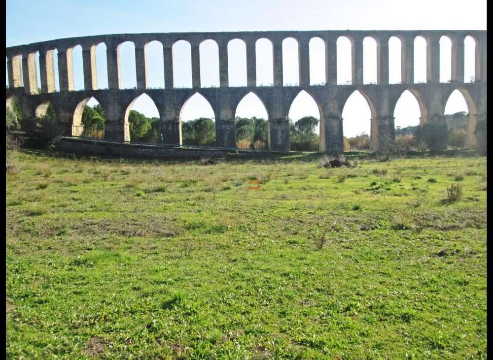 Carregueiros Tomar terrain picture 137043