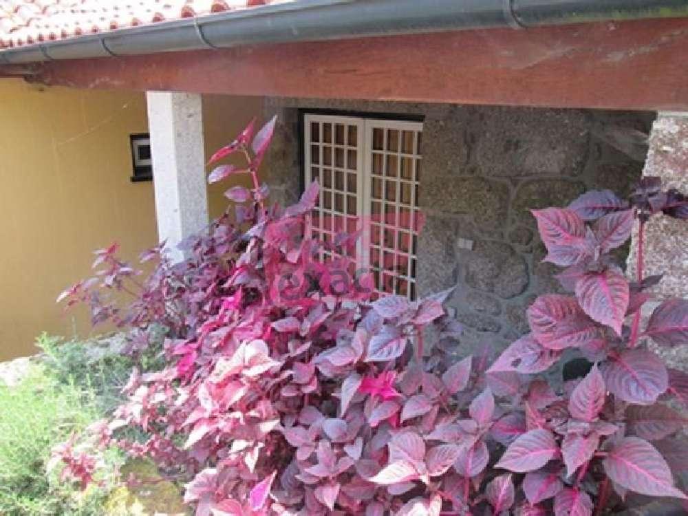 Ponte de Lima Ponte De Lima Haus Bild 134566