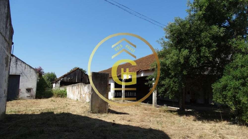Alpiarça Alpiarça casa foto #request.properties.id#