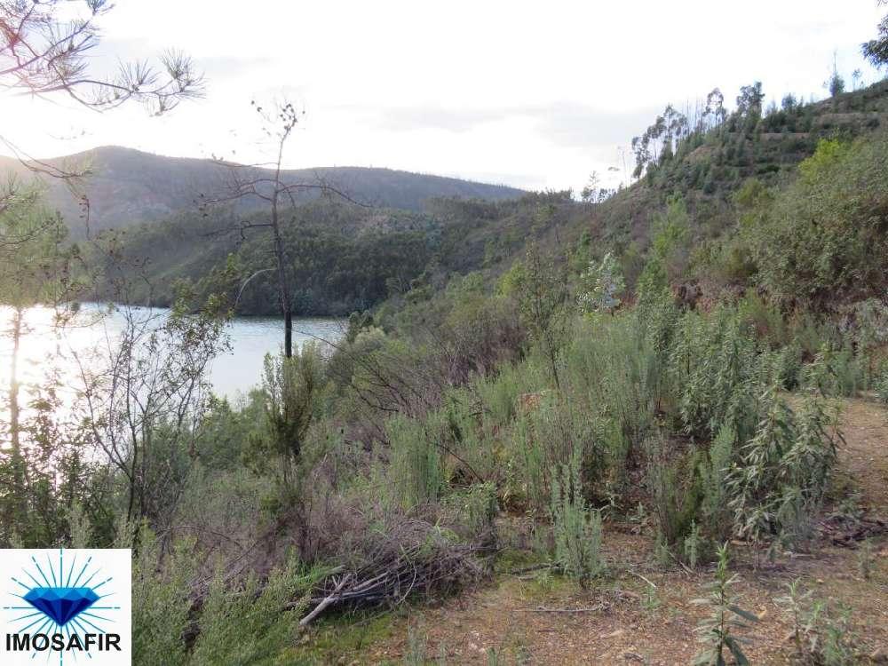 Vila de Rei Vila De Rei terrain photo 137337
