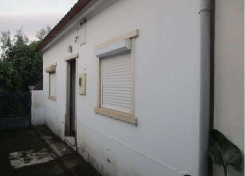 Rio Maior Rio Maior house picture 136056