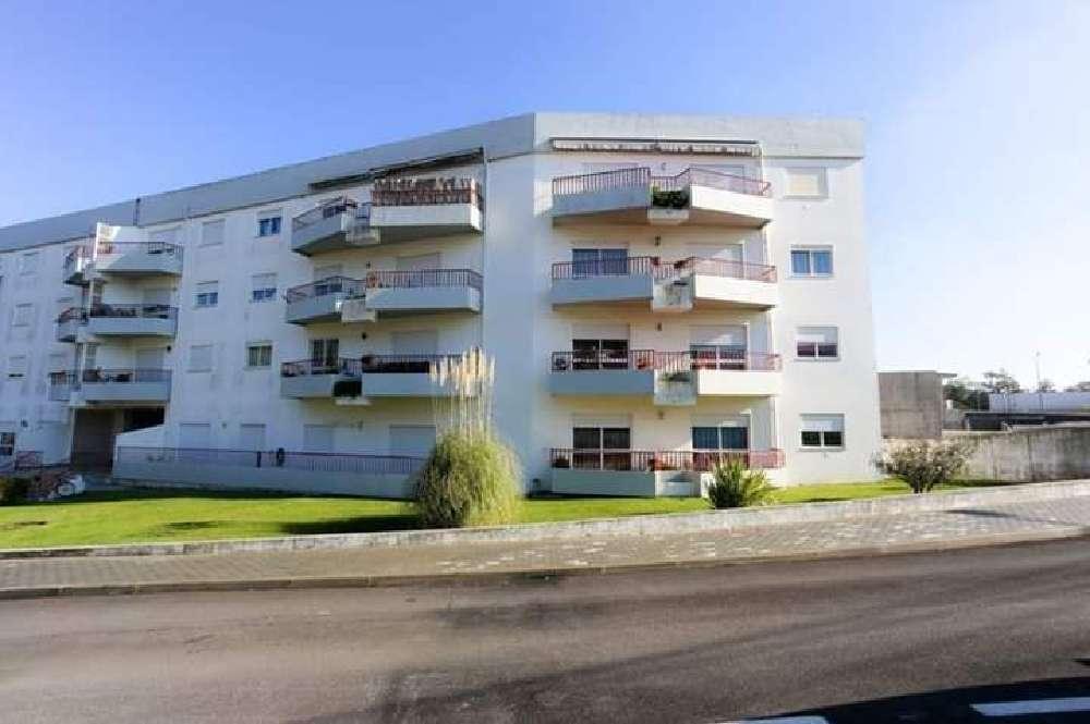 Gatões Montemor-O-Velho apartamento foto #request.properties.id#