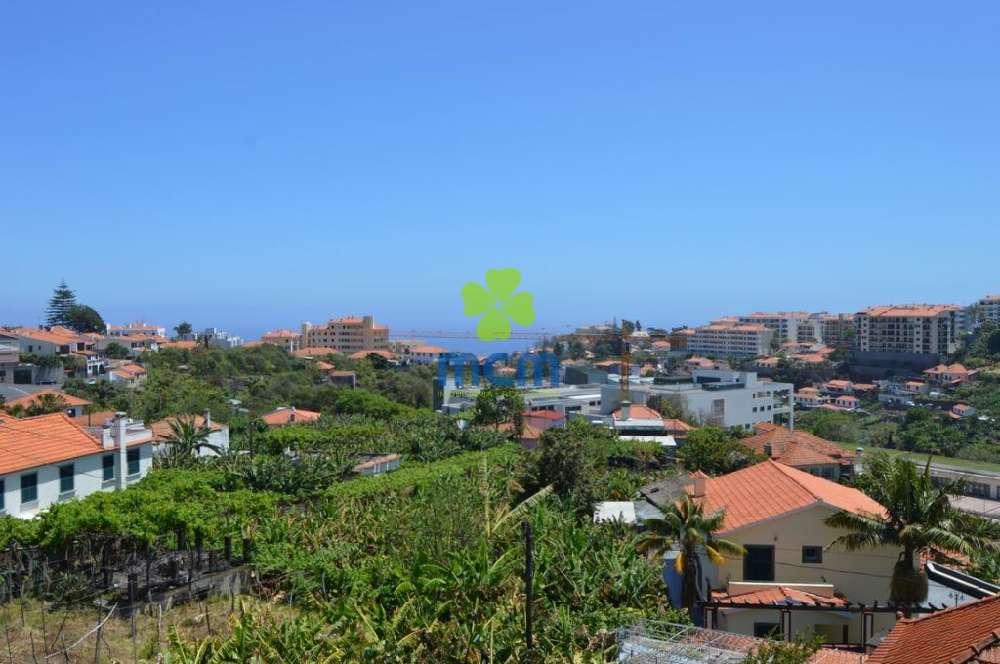 Funchal Funchal casa imagem 139764