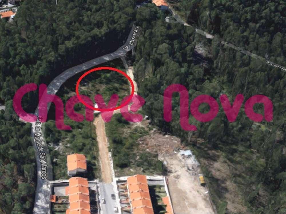 Fajões Oliveira De Azeméis terrain picture 139037