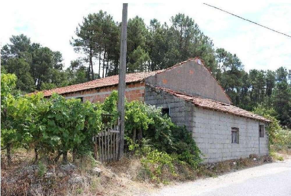 Moledo Castro Daire casa foto #request.properties.id#