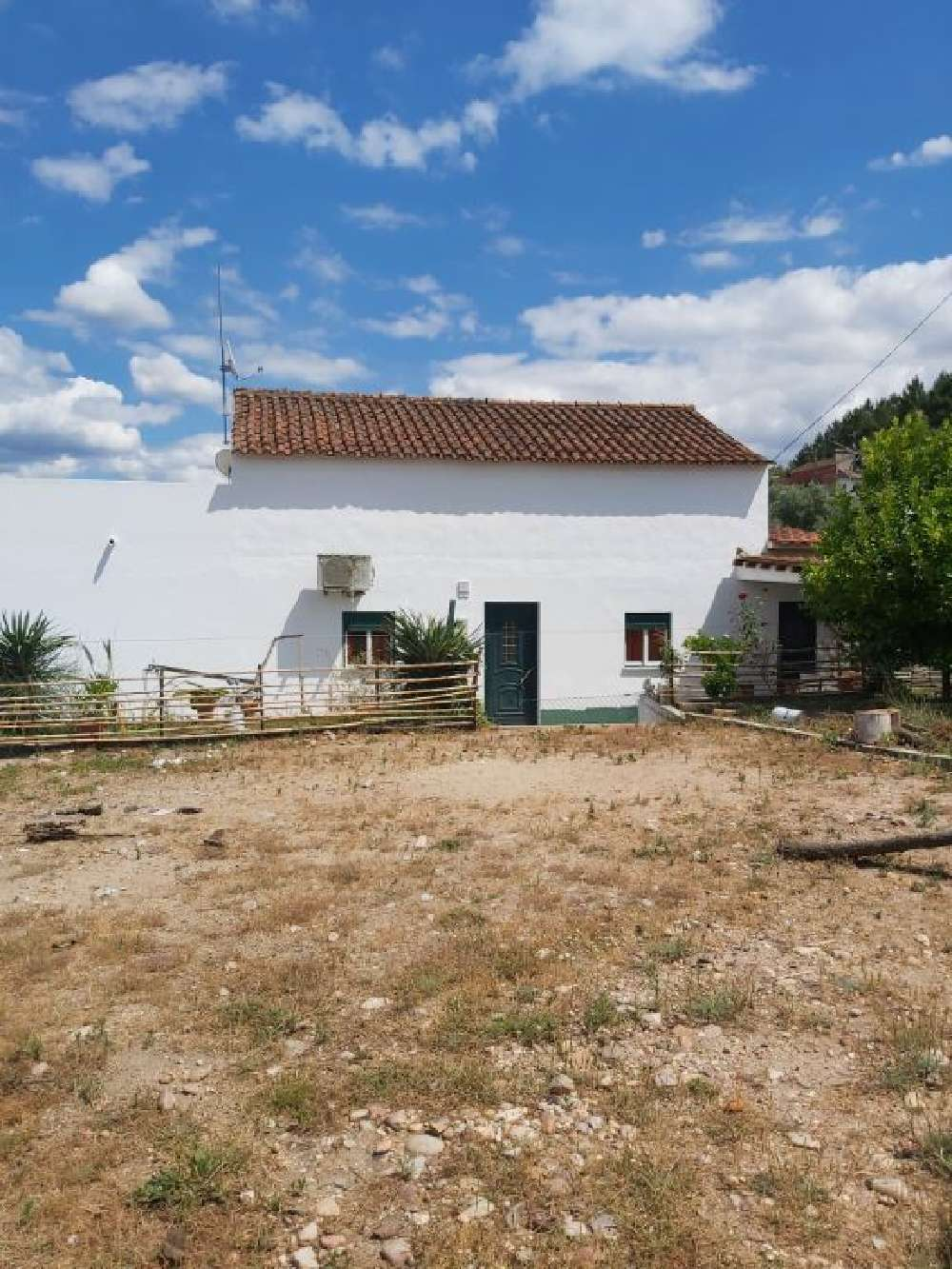 Bemposta Abrantes house picture 138767