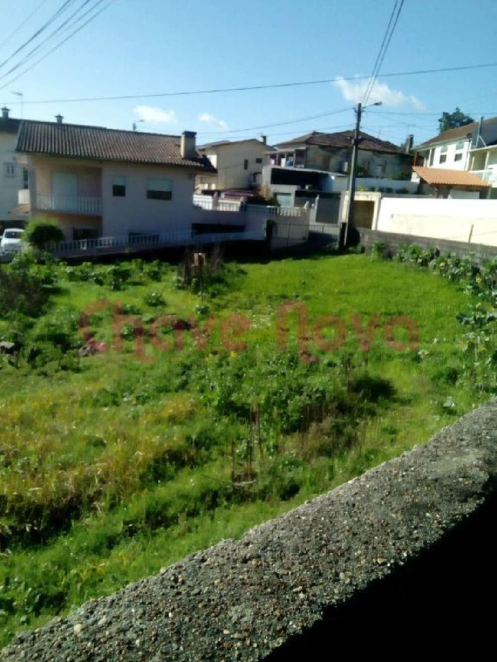 Baganha Oliveira De Azeméis terrain picture 138995