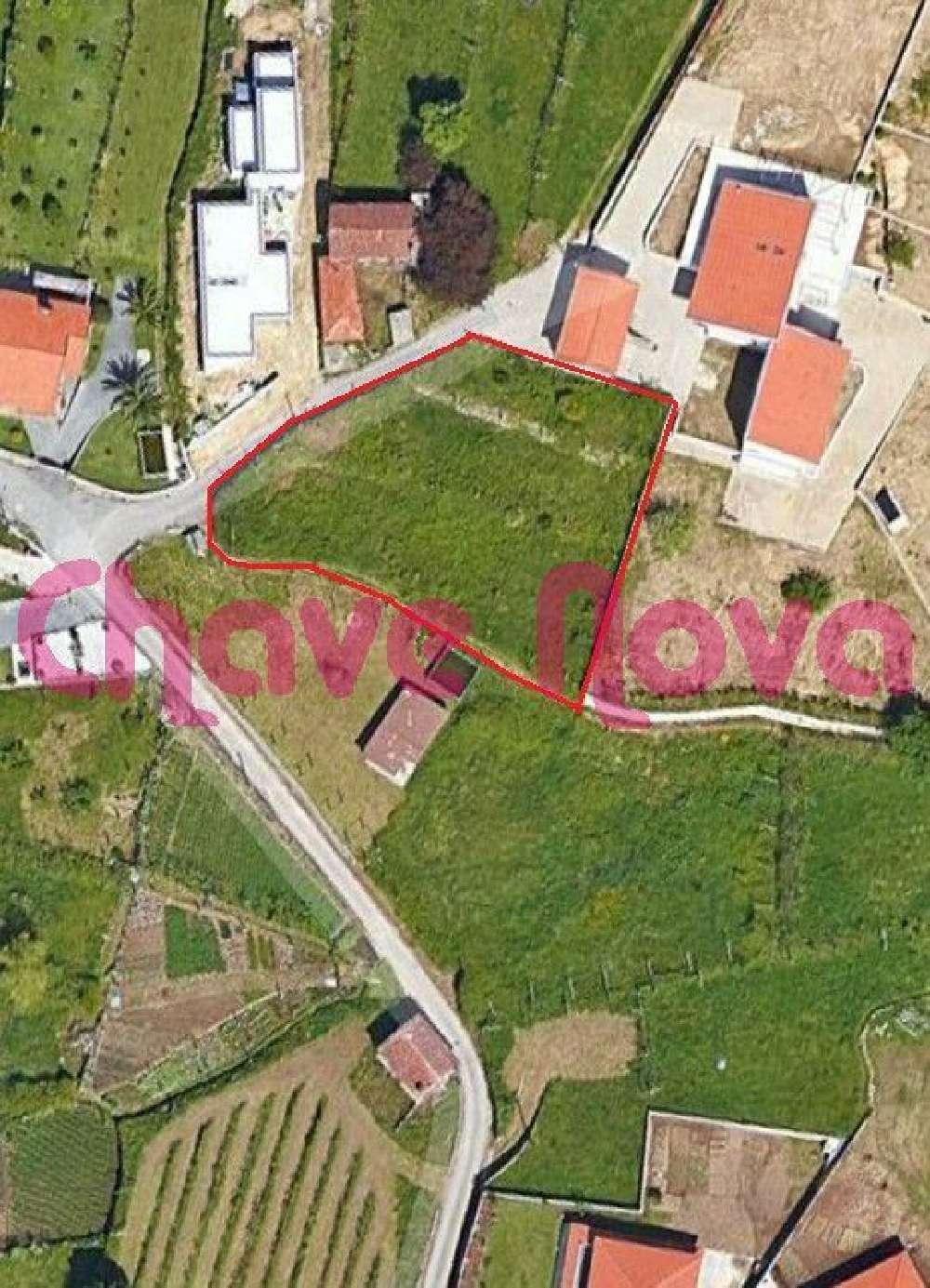 Macieira de Cambra Vale De Cambra terrain picture 139057