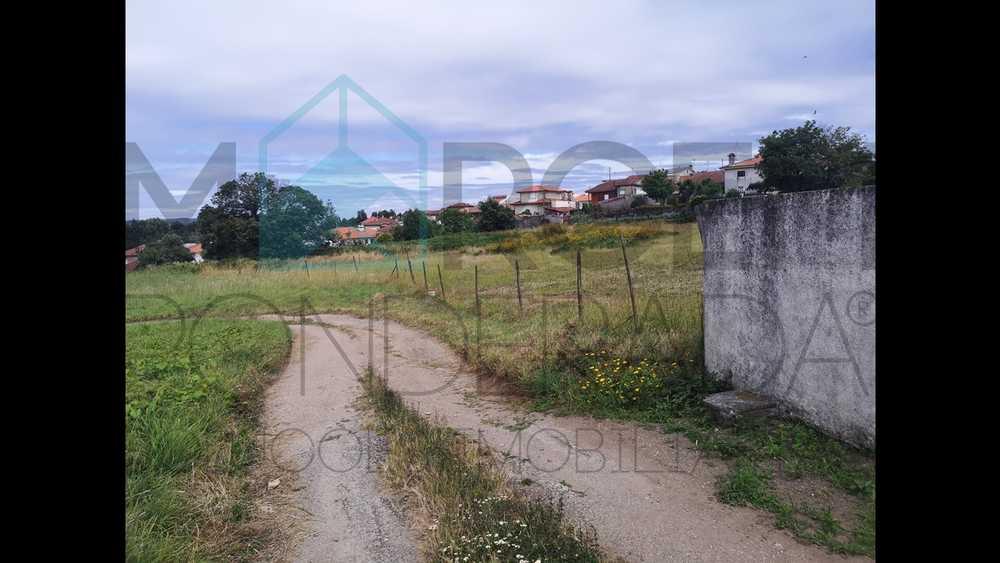 Bragança Bragança terrain picture 140186