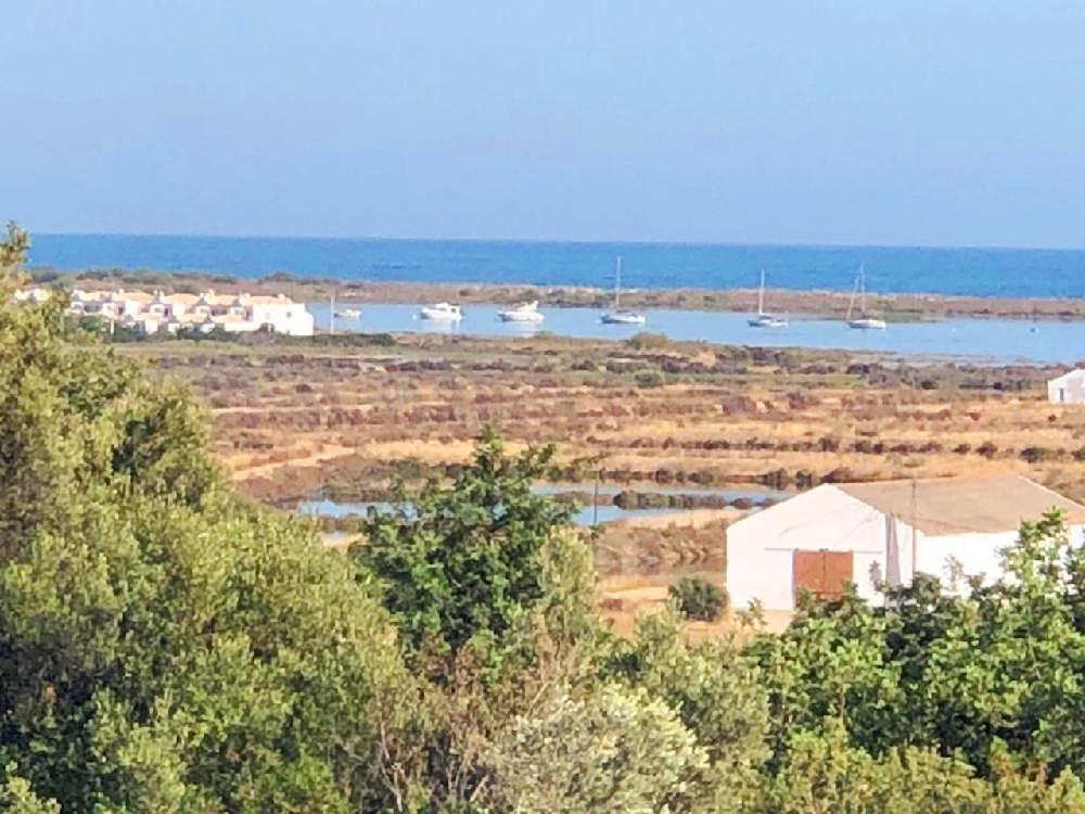Estombar Lagoa (Algarve) terrain photo 140119