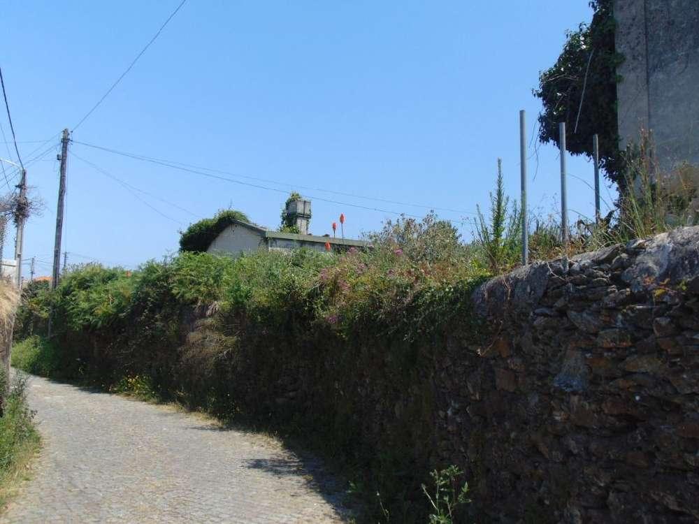 Monte Ceboleiro Almodôvar terrain picture 139439