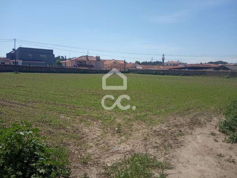 Touguinha Vila Do Conde terrain picture 139324
