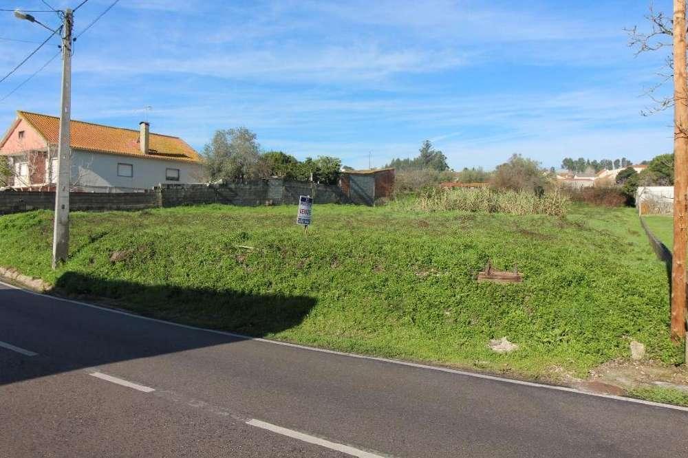 Milagres Leiria terreno foto #request.properties.id#