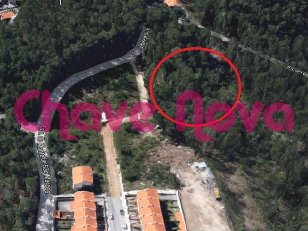 Fajões Oliveira De Azeméis terrain picture 139045