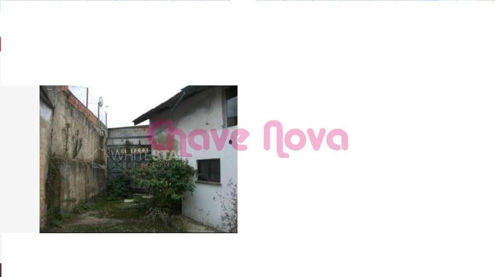 Frossos Albergaria-A-Velha Haus Bild 139174