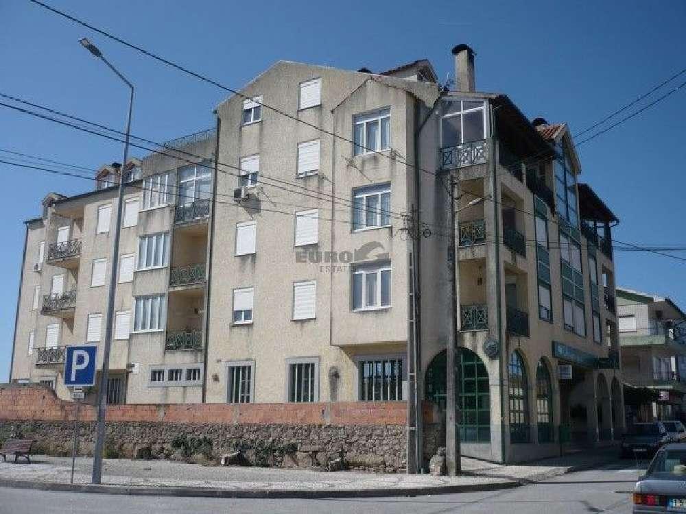 Fiais da Telha Carregal Do Sal apartamento foto #request.properties.id#