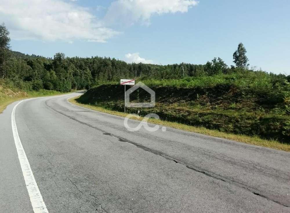 Luzio Paredes De Coura Grundstück Bild 139376