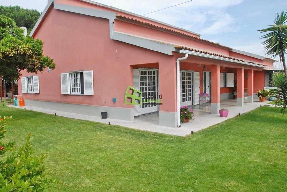 Quinta do Anjo Palmela hus photo 139616