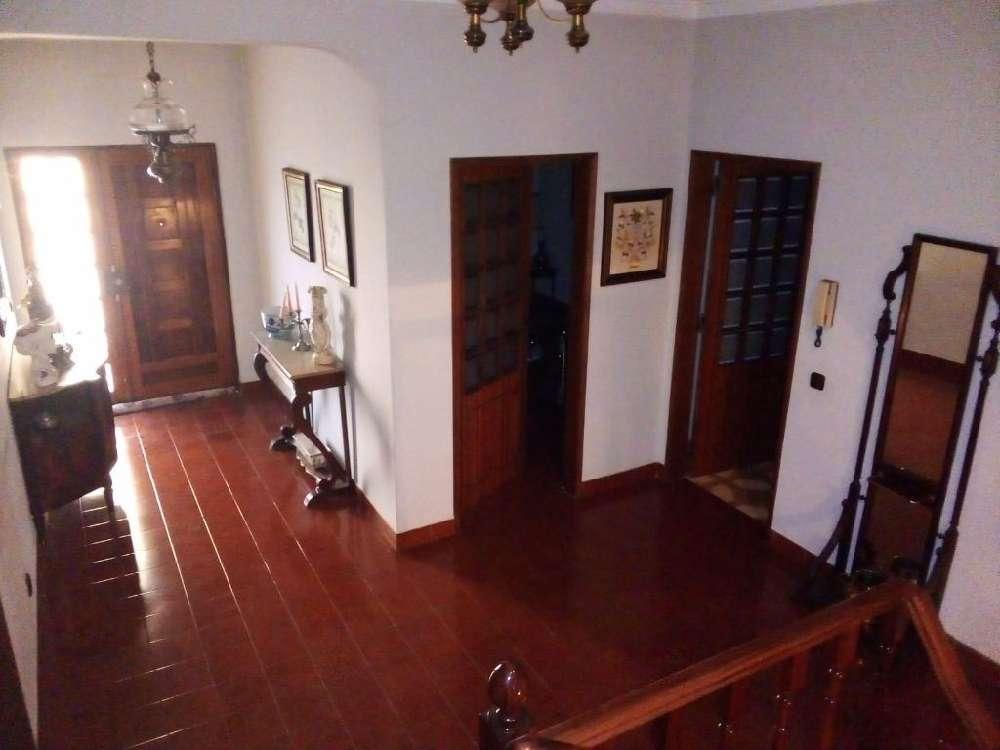 Castelo Branco Castelo Branco casa foto #request.properties.id#