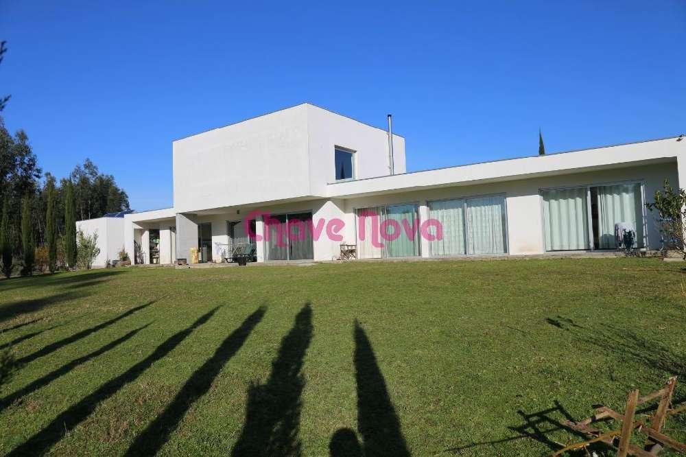 Pinheiro Oliveira De Azeméis house picture 139060