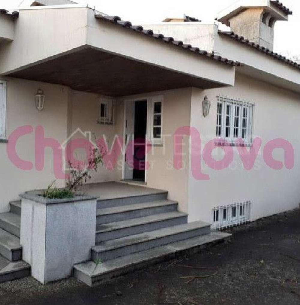 Ul Oliveira De Azeméis Haus Bild 139186