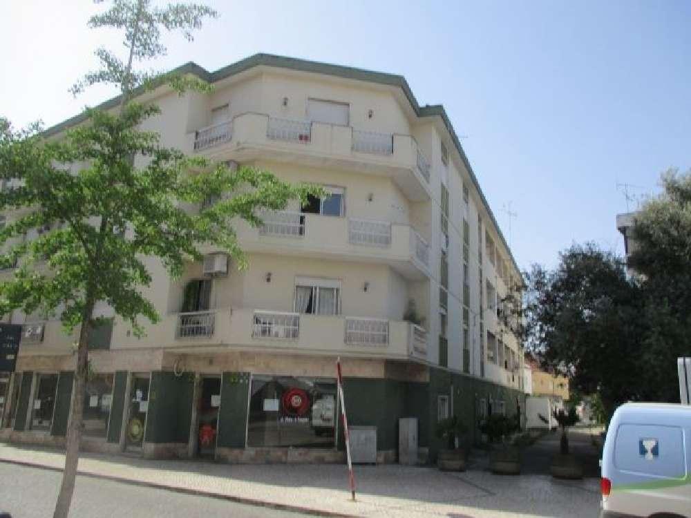 Entroncamento Entroncamento Apartment Bild 139261