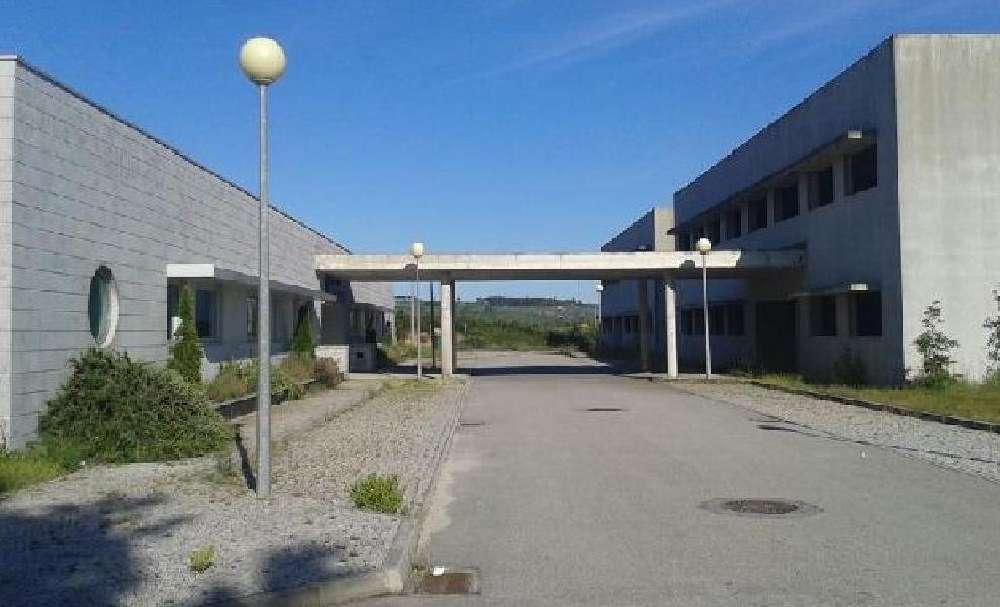 Oliveira de Baixo Viseu house picture 139837