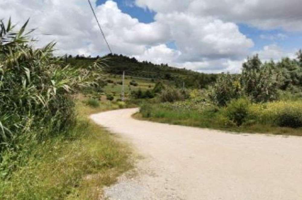 Alenquer Alenquer terrain photo 144434