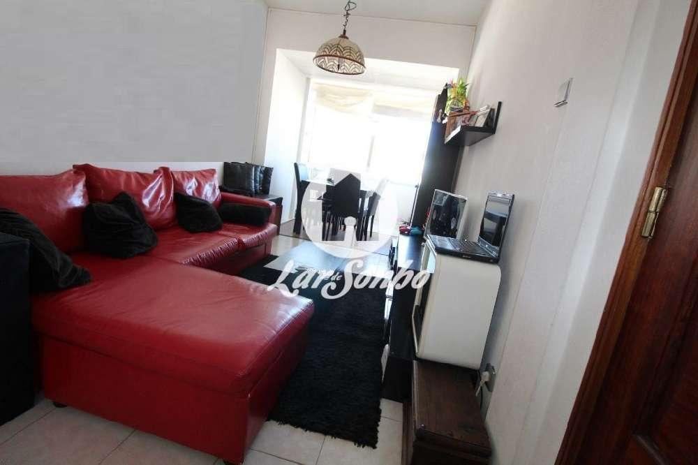 Palme Barcelos apartment picture 144874