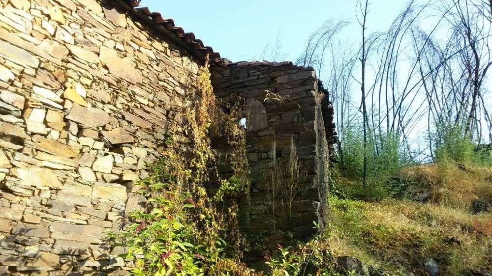 Troviscal Sertã house picture 145171