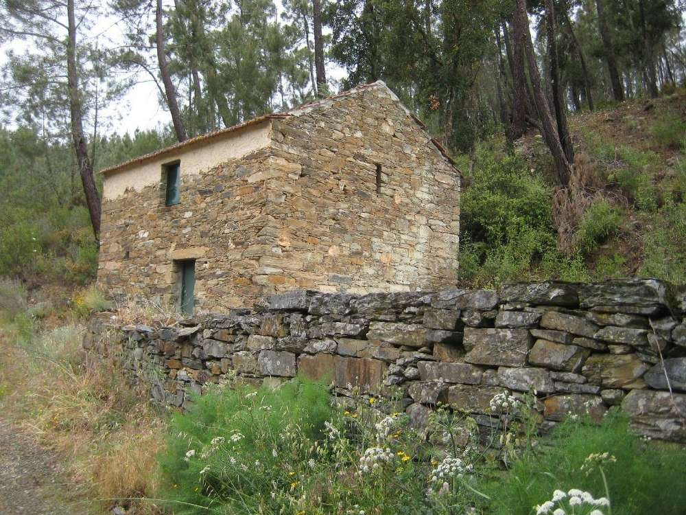 Peral Proença-A-Nova terreno foto #request.properties.id#