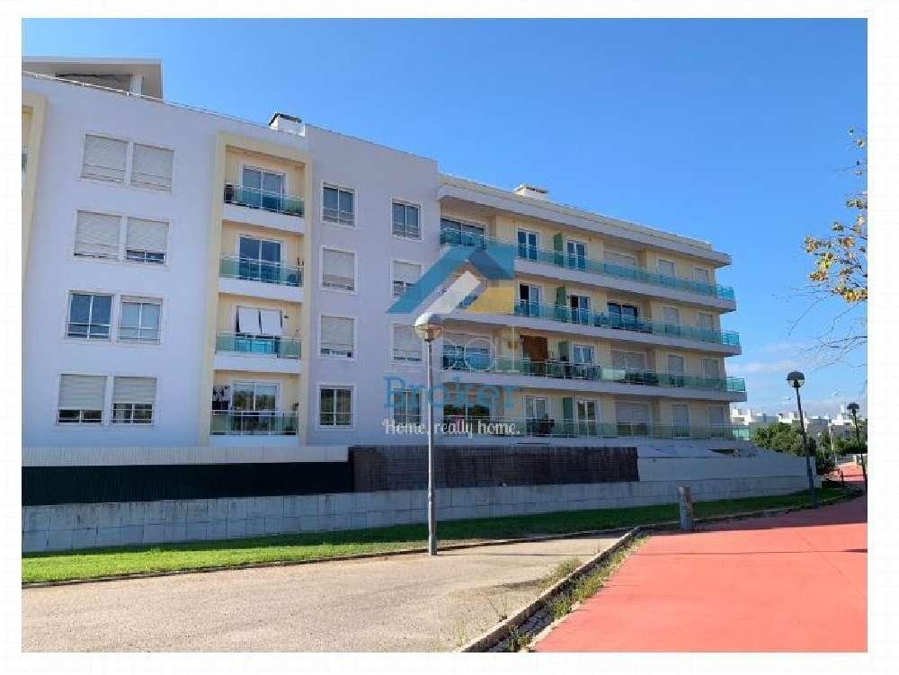 Oeiras Oeiras Apartment Bild 145066