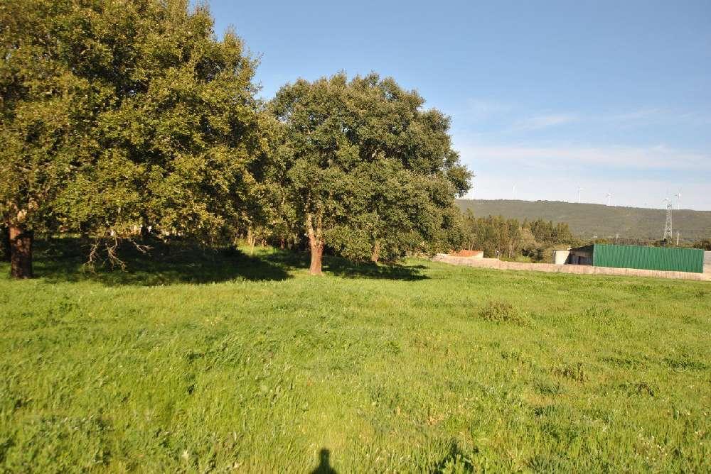 Valverde Santarém terrain picture 140392