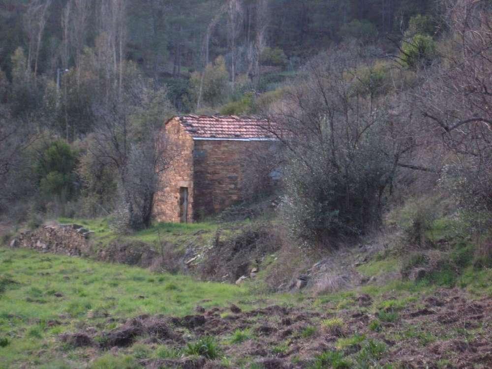 Ermida Sertã terrain picture 145130