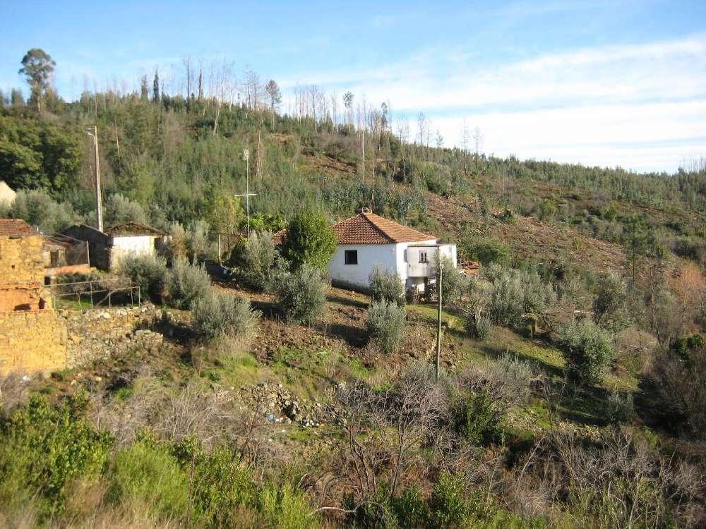 Ceiroquinho Pampilhosa Da Serra casa foto #request.properties.id#