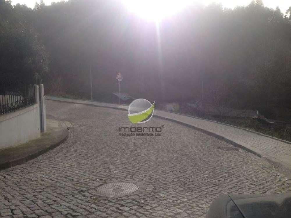 Paços de Brandão Santa Maria Da Feira terrain picture 144523