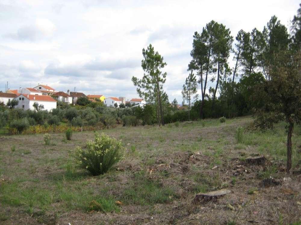 Fundada Vila De Rei terrain photo 145146