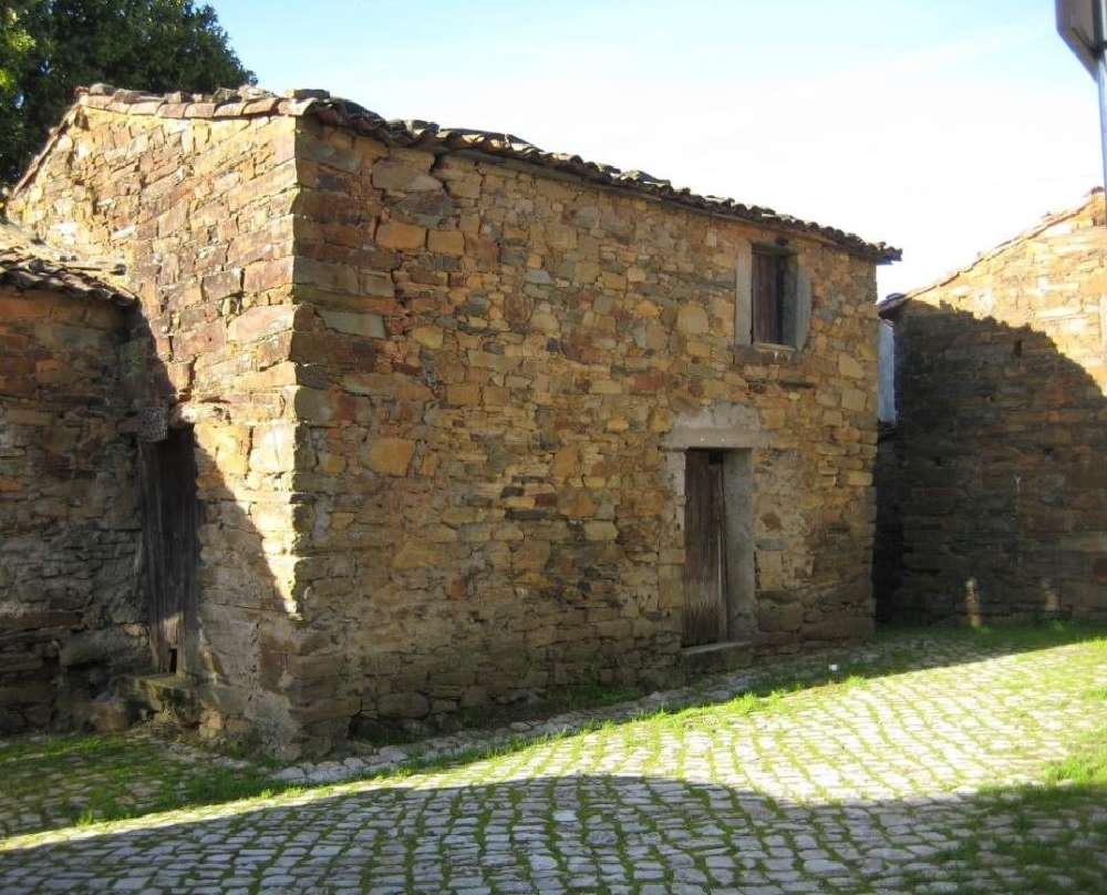 Troviscal Sertã house picture 145145