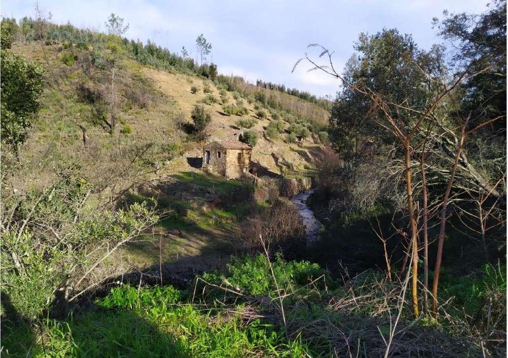 Várzea dos Cavaleiros Sertã terrain picture 145138