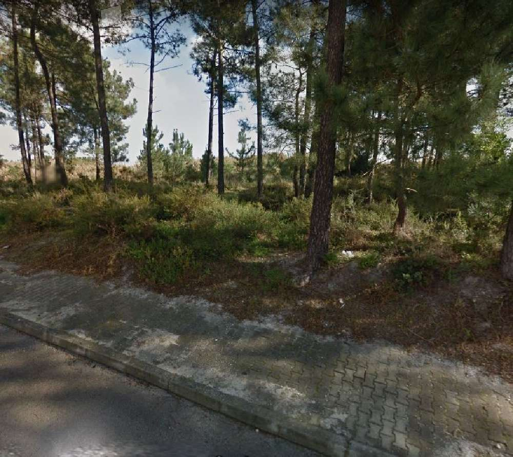 Corroios Seixal terreno foto #request.properties.id#