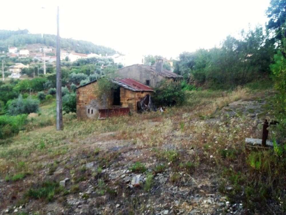 Sertã Sertã house picture 145165