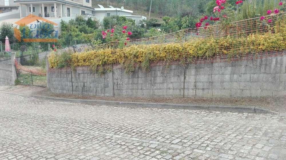 Lomba Gondomar terrain picture 144306