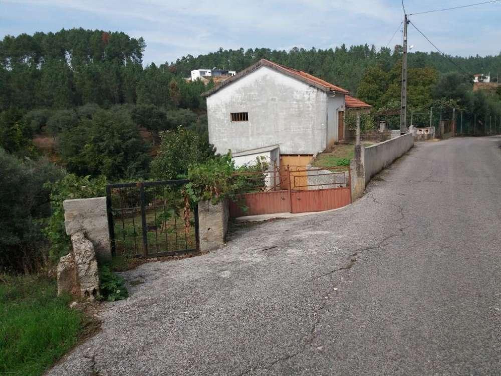 Sertã Sertã house picture 145186