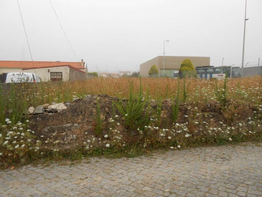 Espinho Espinho terreno foto #request.properties.id#