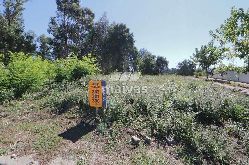 Soutelo Vila Verde terrain picture 146555