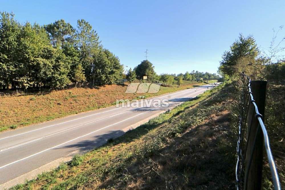 Soutelo Vila Verde terrain picture 146552