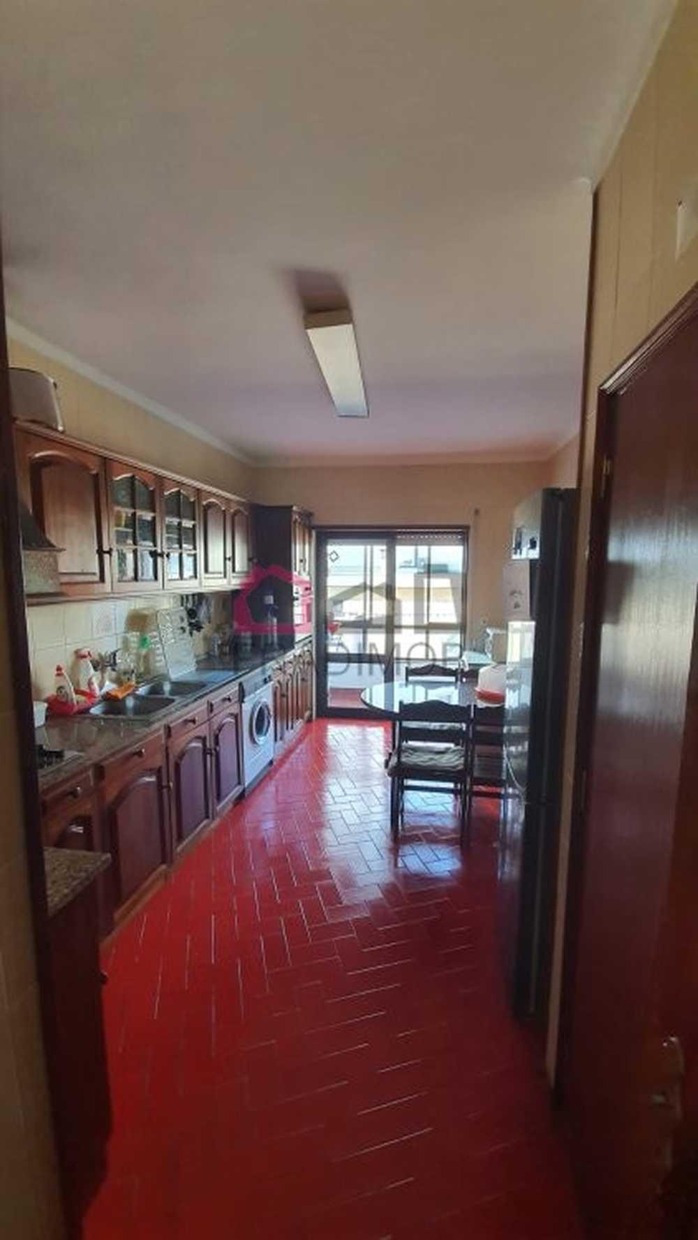 Viseu Viseu apartment picture 148008